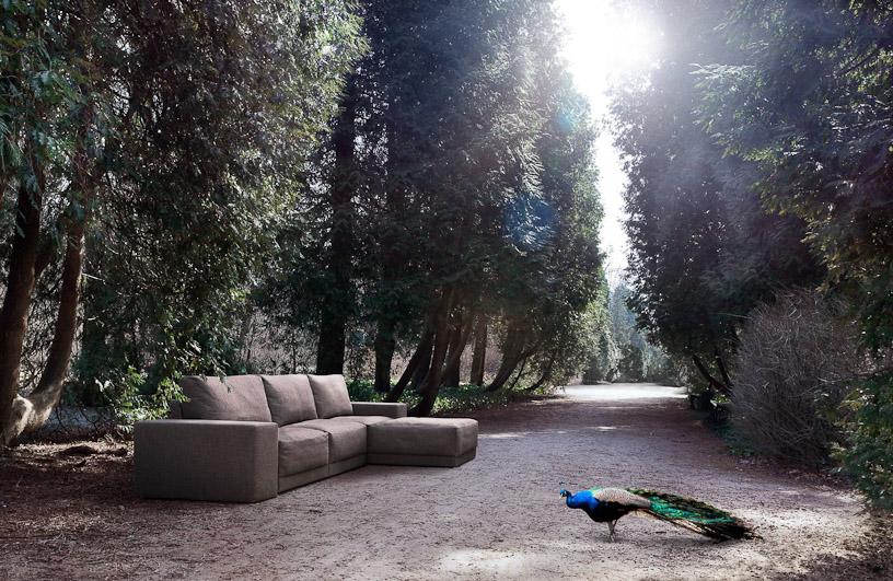 Sofa Badu Fot: Materiały prasowy COMFORTY
