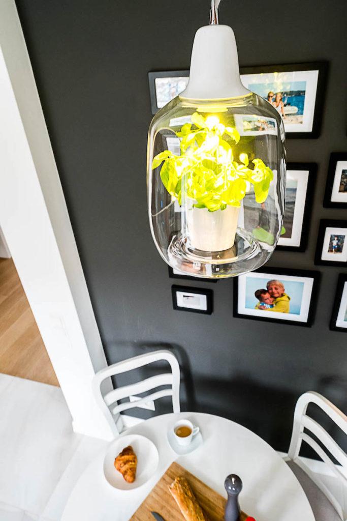 lampa z kwiatkiem szklana lampa LIGHTOVO MILO lampa z bazylia klimatyczna kuchnia architekt wnętrz warszawa Jacek Tryc wnętrza