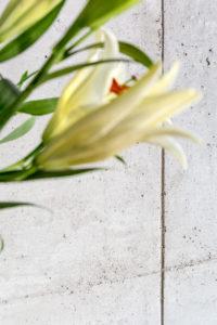 Jacek Tryc architekt wnętrz ściana z betonu w salonie dobry a projektant domów projekt mieszkania szukam architekta polecony architekt projektant dobre opinie Warszawa